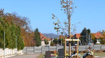 V meste boli počas pandémie nútení otvoriť nový cintorín. Zlaté Moravce si uctili pamiatku obetí Covid-19